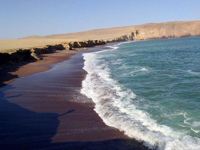 S'éblouir face à la réserve naturelle de Paracas