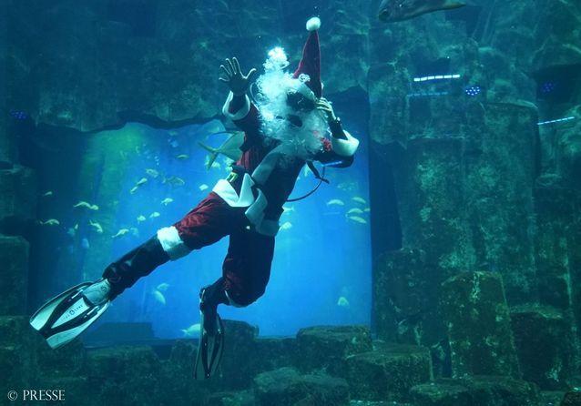 « Le père Noël plongeur »