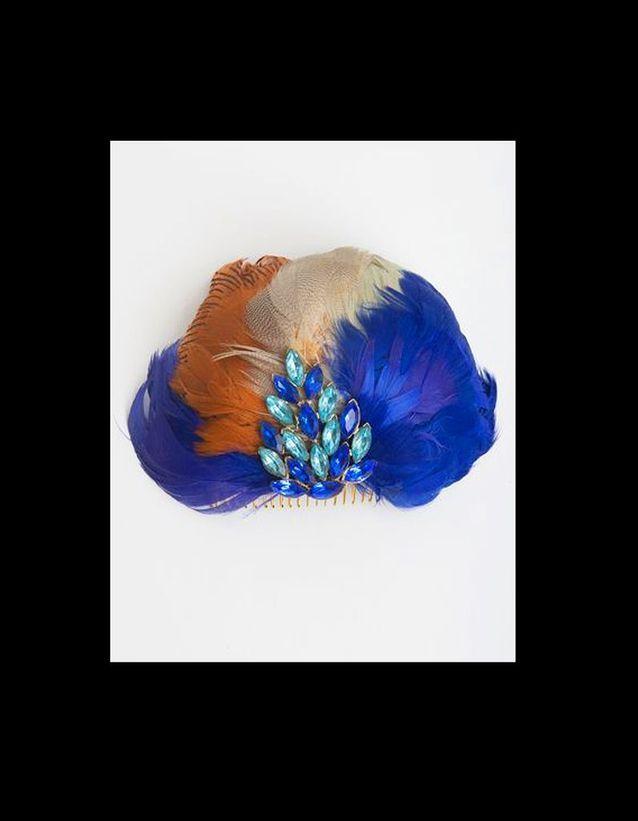 Plumes Bleues et  Oranges