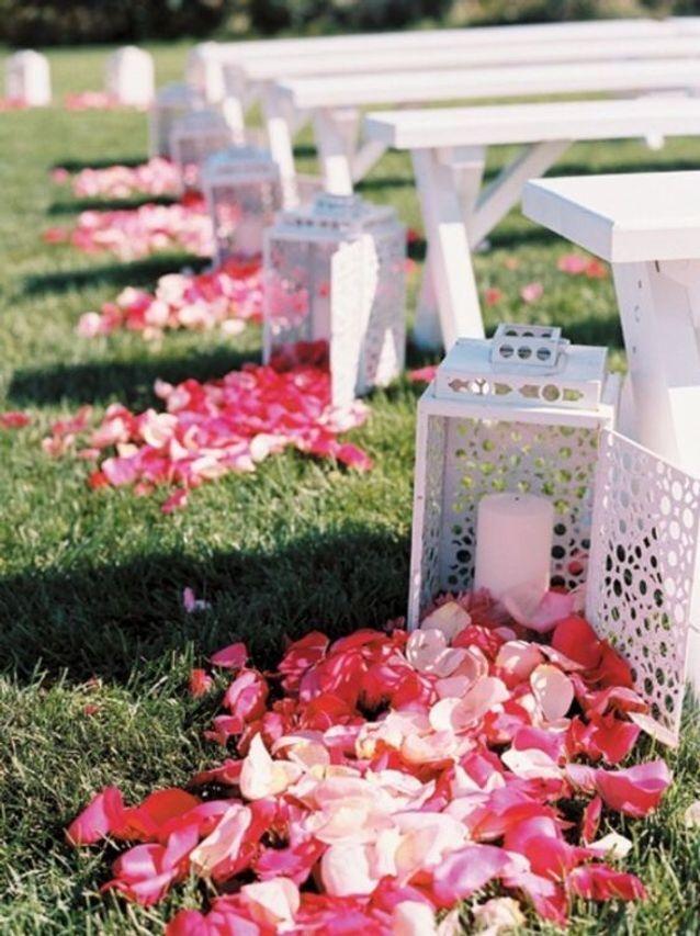 Pétales de roses et lanternes