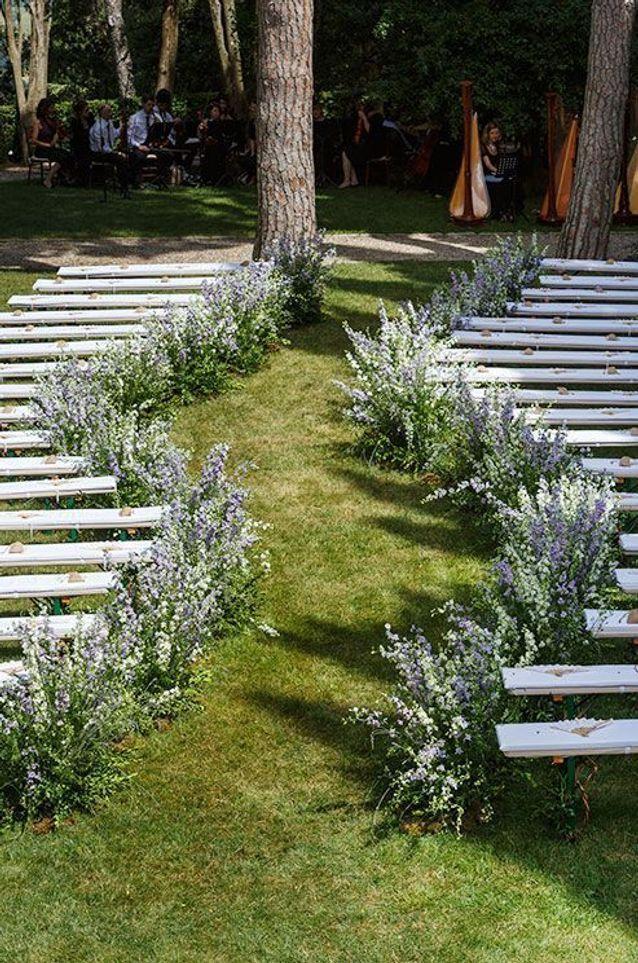 Les fleurs des champs le long des bancs
