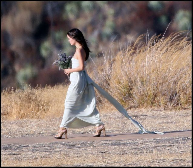 La robe de demoiselle d'honneur de Rachel Bilson