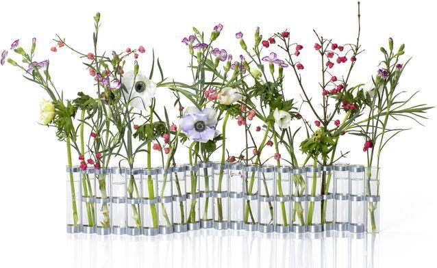 Vase d'avril medium, Tsé-Tsé