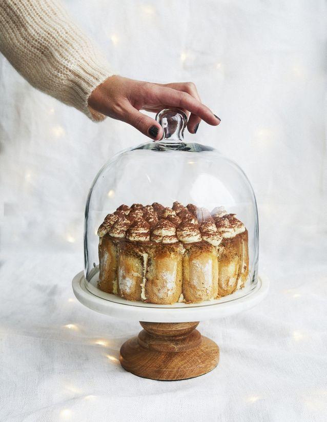 Christmas cake : Charlotte tiramisù