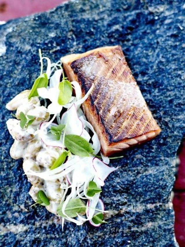 Noël scandinave: le saumon façon aquavit