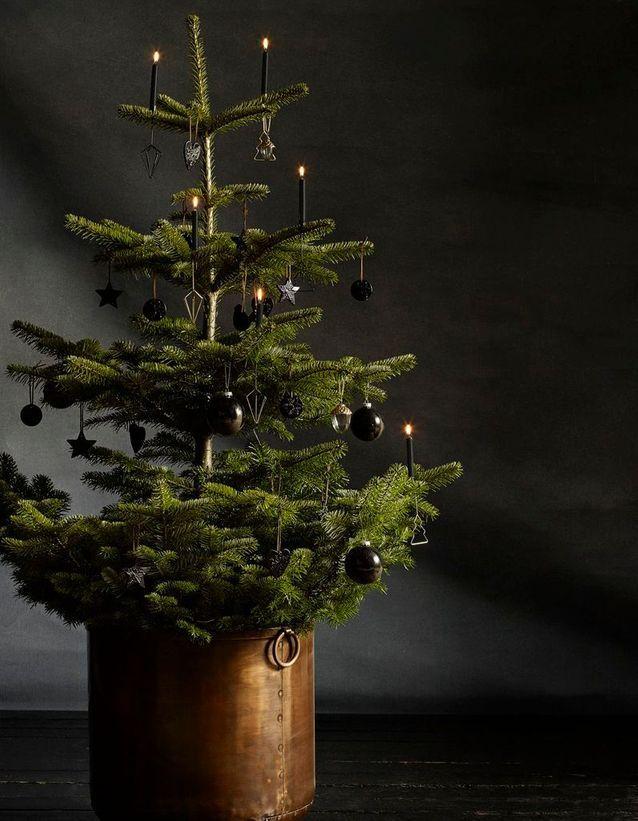 Sapin de Noël dans un pot en cuivre