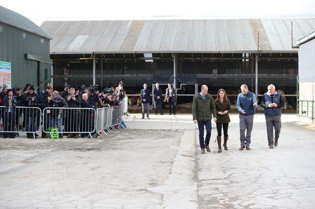 Kate Middleton et le prince William étaient très attendus à la ferme Teagasc