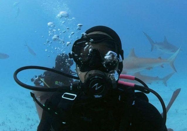 Will Smith : il surmonte sa peur en nageant avec des requins