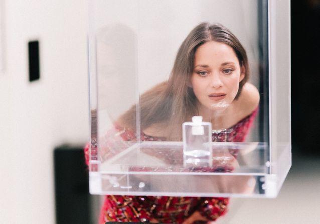 Vanessa Paradis, Marion Cotillard, Angèle, Gaspard Ulliel… à l'inauguration de l'exposition consacrée à Gabrielle Chanel