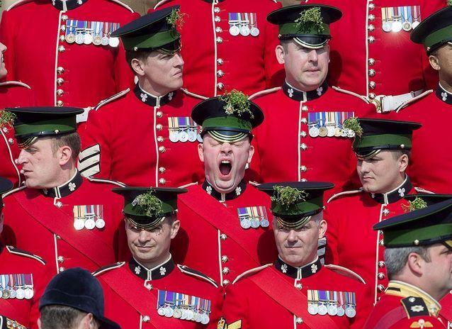 Les gardes irlandais