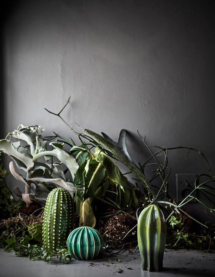 Cactus décoratifs Ikea