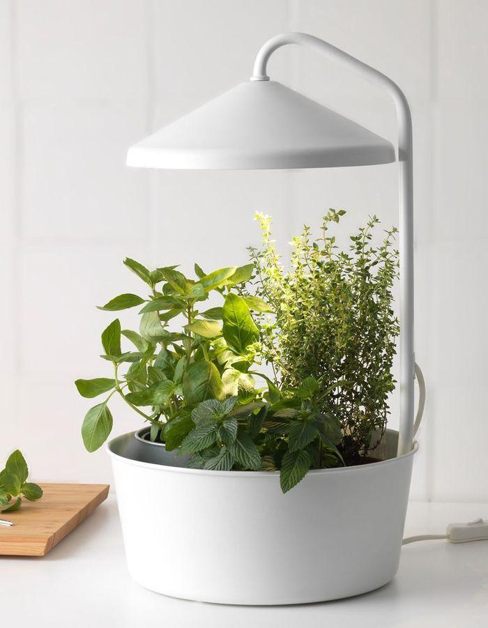 Lampe chauffante pour plantes Ikea