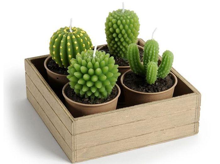 Des bougies cactus