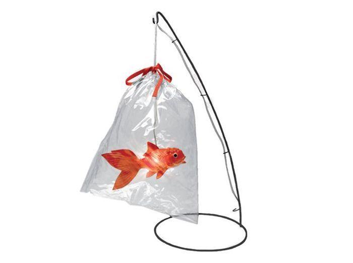 Lovely market lampe poisson