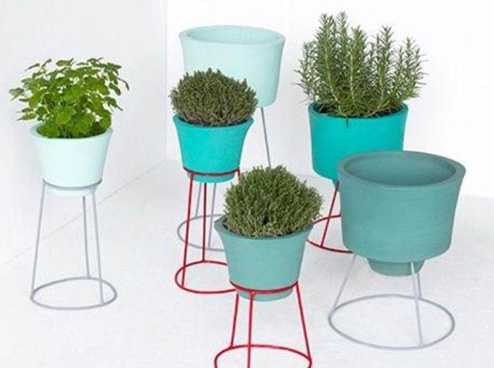 Serax support plantes