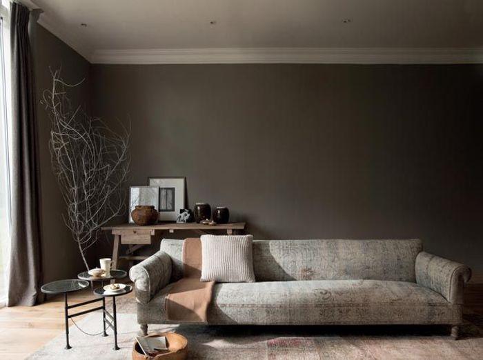 Une peinture gris souris très chic pour mon salon