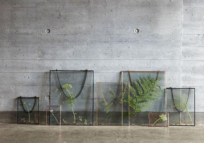 Une décoration végétale via des feuilles sous cadre