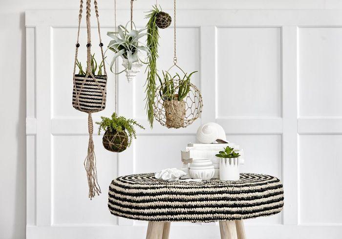 Une décoration végétale via des pots suspendus