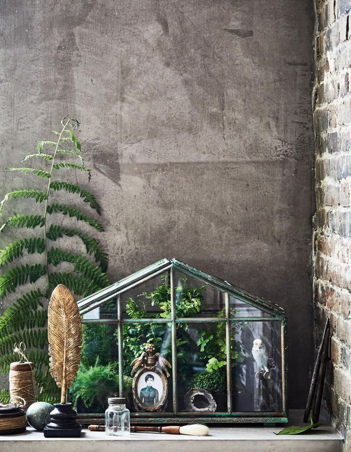 Un jardin d'hiver minimaliste via des plantes XXS dans une serre