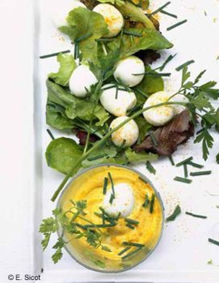 Oeufs de caille mayonnaise