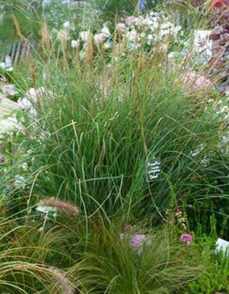 Jardin En Pente Comment Faire comment créer un jardin sur une pente? - elle décoration