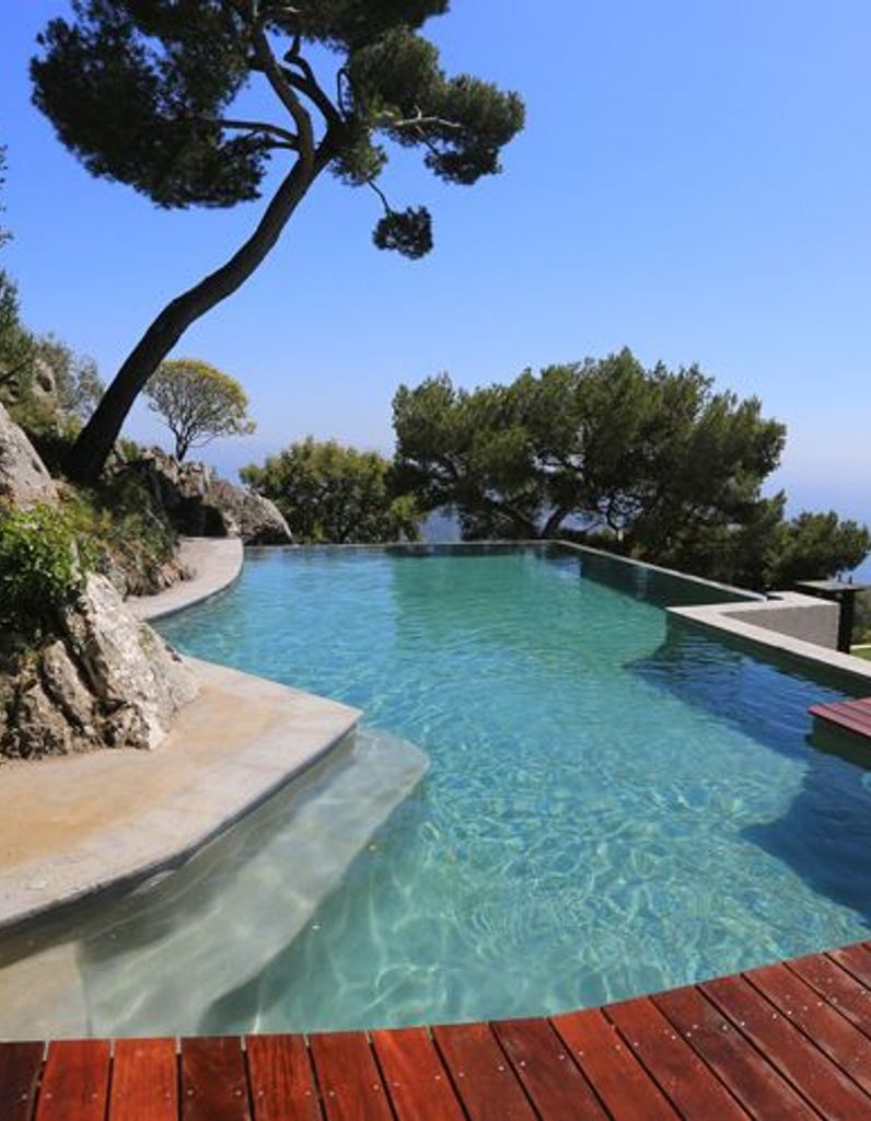 Idée déco : les plantes exotiques autour de la piscine ...