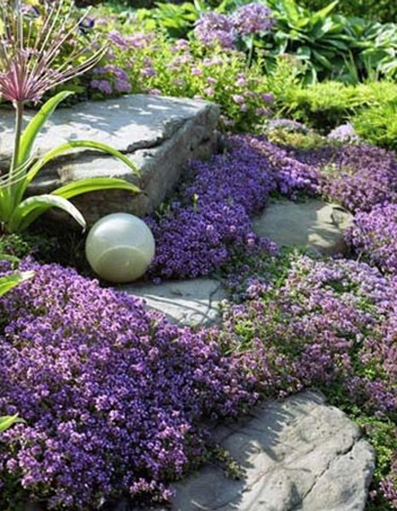 Aménagement D Un Parterre De Fleurs comment créer un massif fleuri zen ? - elle décoration