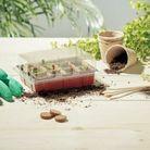 Kit de jardinage pour plantes aromatiques