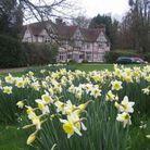 Le domaine de Pashley Manor
