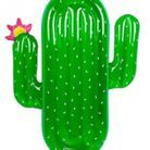 Une bouée cactus