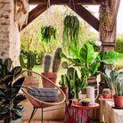 Des paniers bohèmes qui servent de cache-pots pour une terrasse ethnique chic