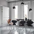 Des chaises Fourmi de différentes couleurs