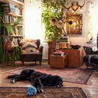 Le Cluttercore, l'art bohème par excellence