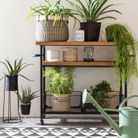 Associer des plantes à une déco black & white