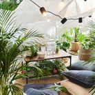 Une ambiance végétale