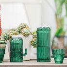 Une carafe et des verres cactus