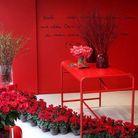 Fleuriste fleurs rouges