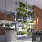 La cuisine semi-ouverte via un mur végétal