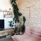 La canapé Togo rose poudré mêlé à des végétaux