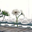 Vase soliflore deco