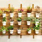 Installez des plantes dans votre entrée