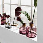 Une décoration végétale via des vases accumulés sur un rebord de fenêtre