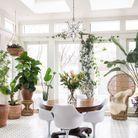 Un fauteuil Emmanuelle sublimé par des plantes