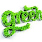 Green vegetal lettre