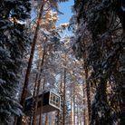 Dormir dans une cabine perchée et design
