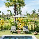Une piscine en pleine nature