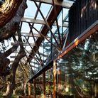 Une maison d'architecte en harmonie avec la nature en Nouvelle-Zélande
