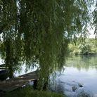 Rivière Adda