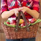 « Une pomme par jour éloigne le docteur pour toujours »