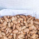 Les oléagineux : amandes, noix, noisettes…